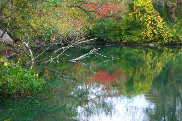 Наиболее характерные места обитания щуки на реках