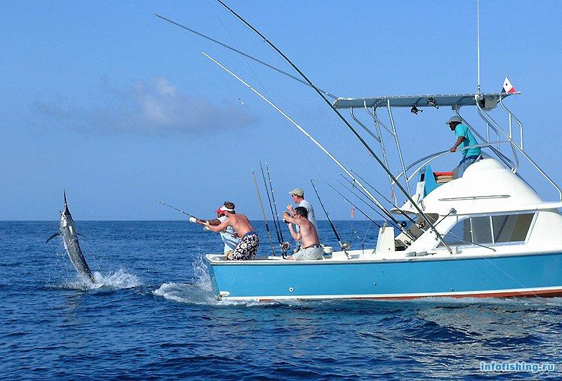 читал, сайт морская рыбалка слодке смотреть видио коттеджи