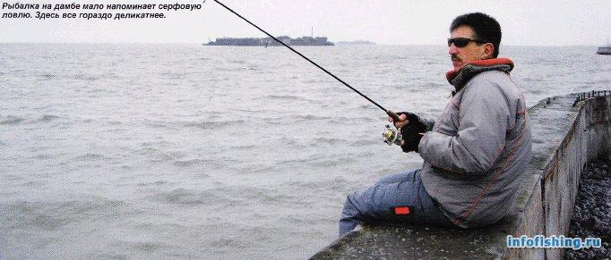Рыбалка на дамбе Санкт-Петербурга