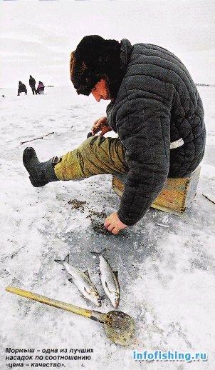Youtube Ловля рипуса по льду