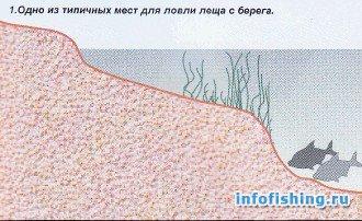 Летняя ловля леща на москва реке