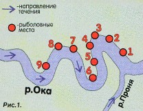 Платная рыбалка в Серпуховском районе