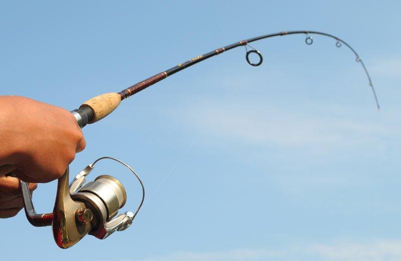 Удочка – лучший подарок для рыболова